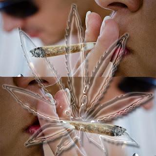 Considerações sobre a legalização da maconha - http://www.mais24hrs.blogspot.com