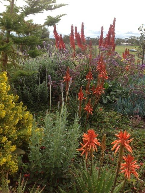 Northam Garden