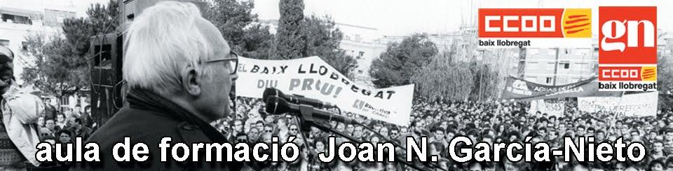 aula de Formació Joan N. García-Nieto