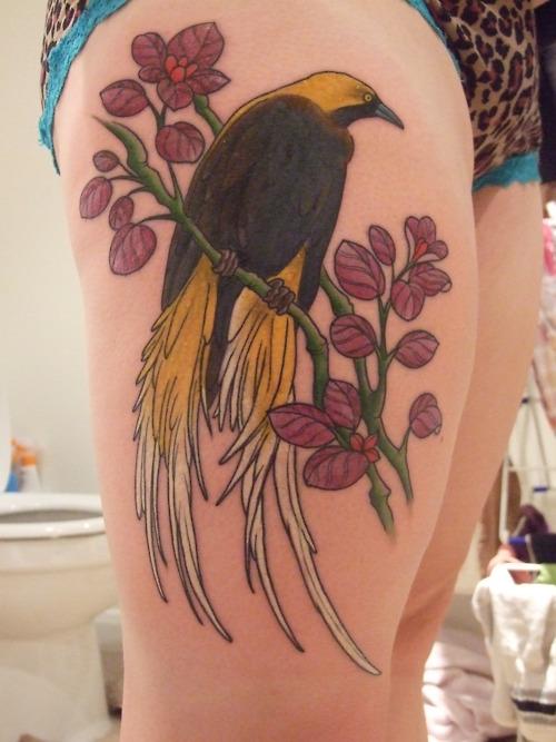 Bird of paradise tattoo - photo#13