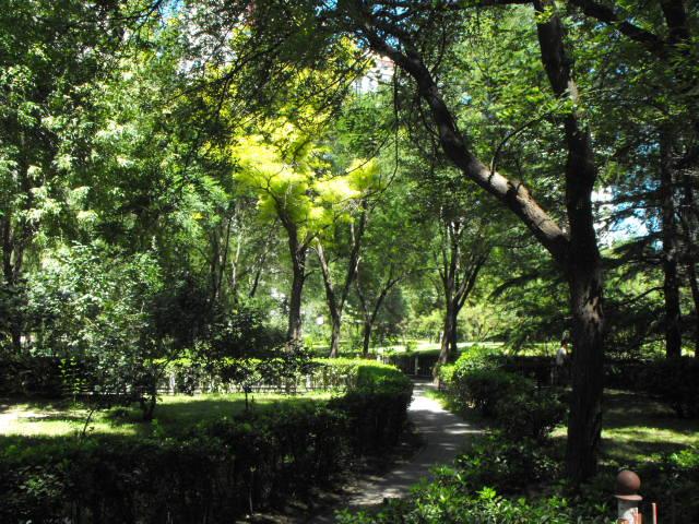 Gardens in Forbidden City