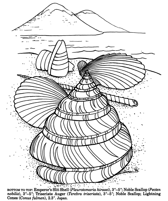 Inkspired musings comments seashells and coloring books for Shells coloring page