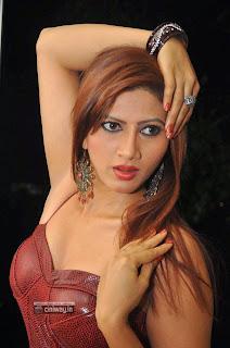 Actress-Rishika-Stills-at-Naakaithe-Nachindi-Movie-Audio-Launch