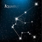 Sun Sign: Aquarius