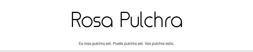 Rosa Pulchra