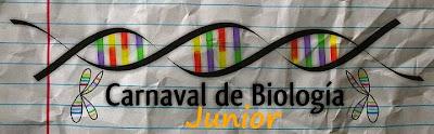 Biocarnaval Junior