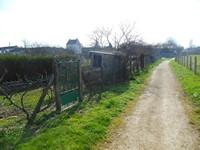 Etang de Chouzy-sur-Cisse : les jardins
