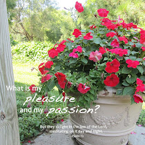 What is My Pleasure and My Passion?