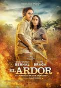 El Ardor 2014