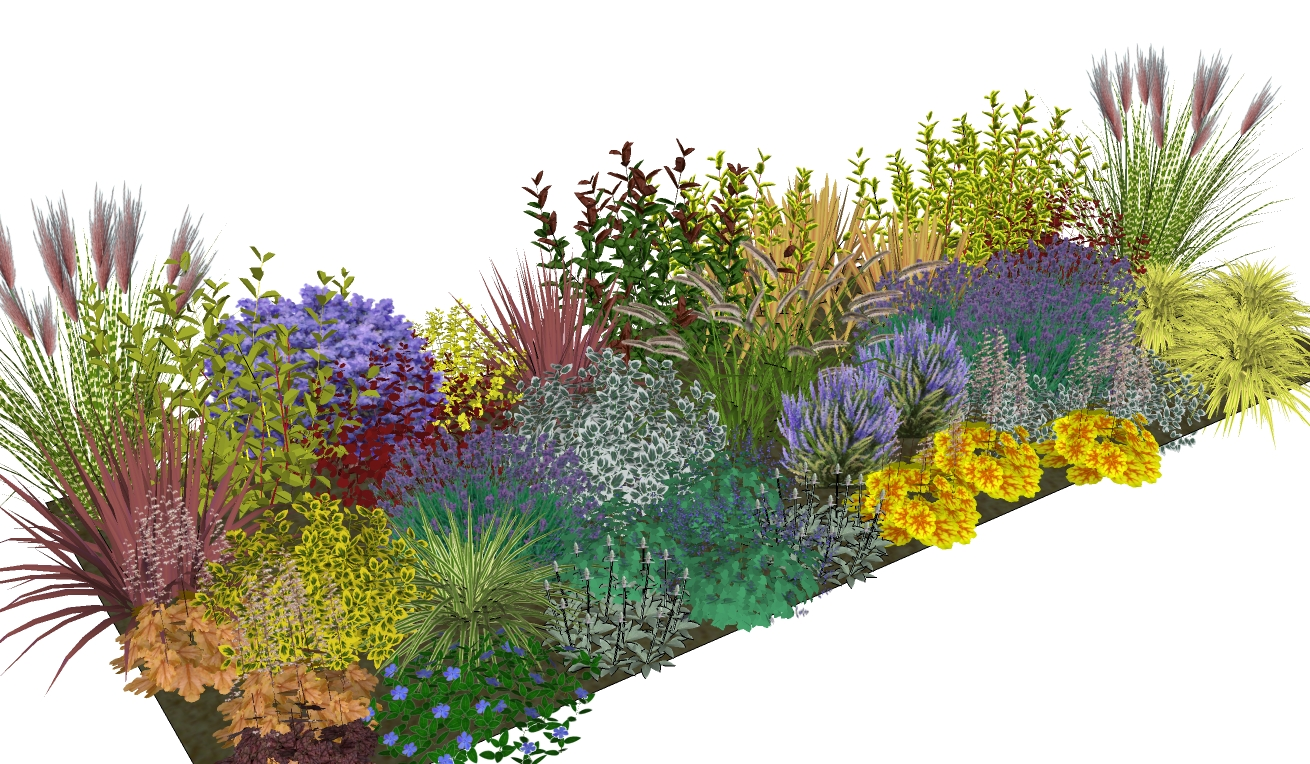 Landscape Borders Plants : Simply borders plants plans in the post
