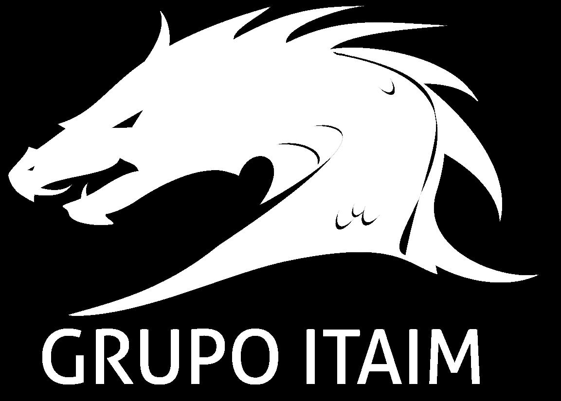 GRUPO ITAIM