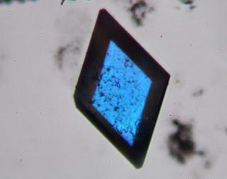 lead chloride microscope