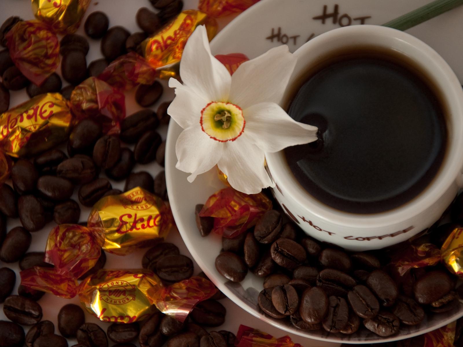 Вечерний кофе и цветы фото