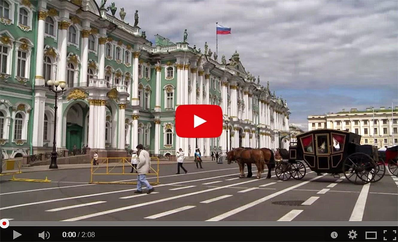 Les chats du musée de l'Ermitage à Saint-Petersbourg !