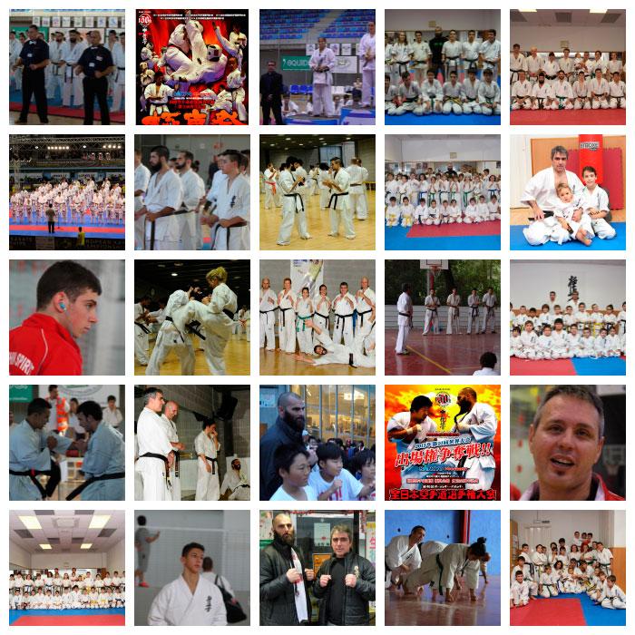 resumen-kyokushinkai-2014