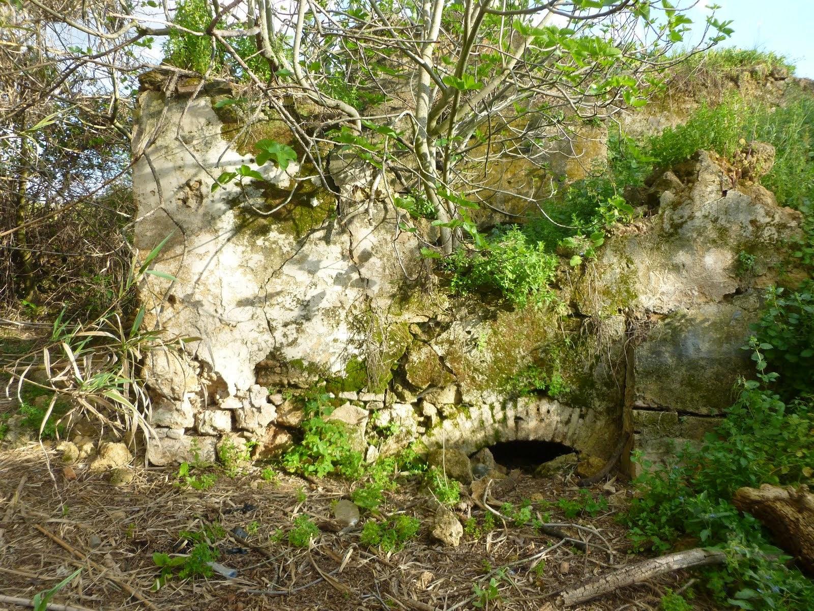 FOTO DENUNCIA: Molino de Tragahierro