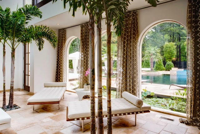 Perfectly Leafy Indoor Trees | Varieties & Styles | Decor | ...love ...