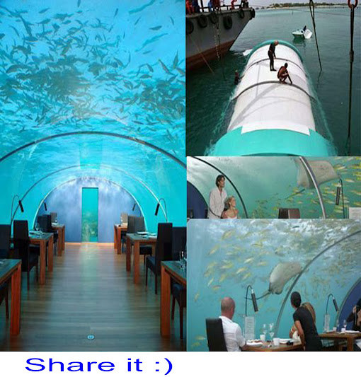 restaurant under sea maldives