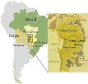 El Pantanal (Brasil)
