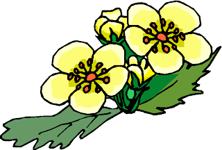 Simple Yellow Flower Free Clipart
