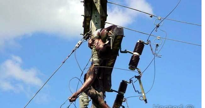 Welcome to backstage360 blog man stealing high tension power lines dies electrocuted