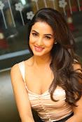 Sonal Chauhan sizzling photo shoot-thumbnail-4