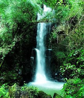 Salto Chico, Parque Nacional de Iguazú, Argentina. Salto Chico: uma das menores quedas d'água vistas durante o Circuito Inferior.