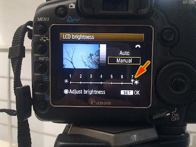 Camera LCD Brightness