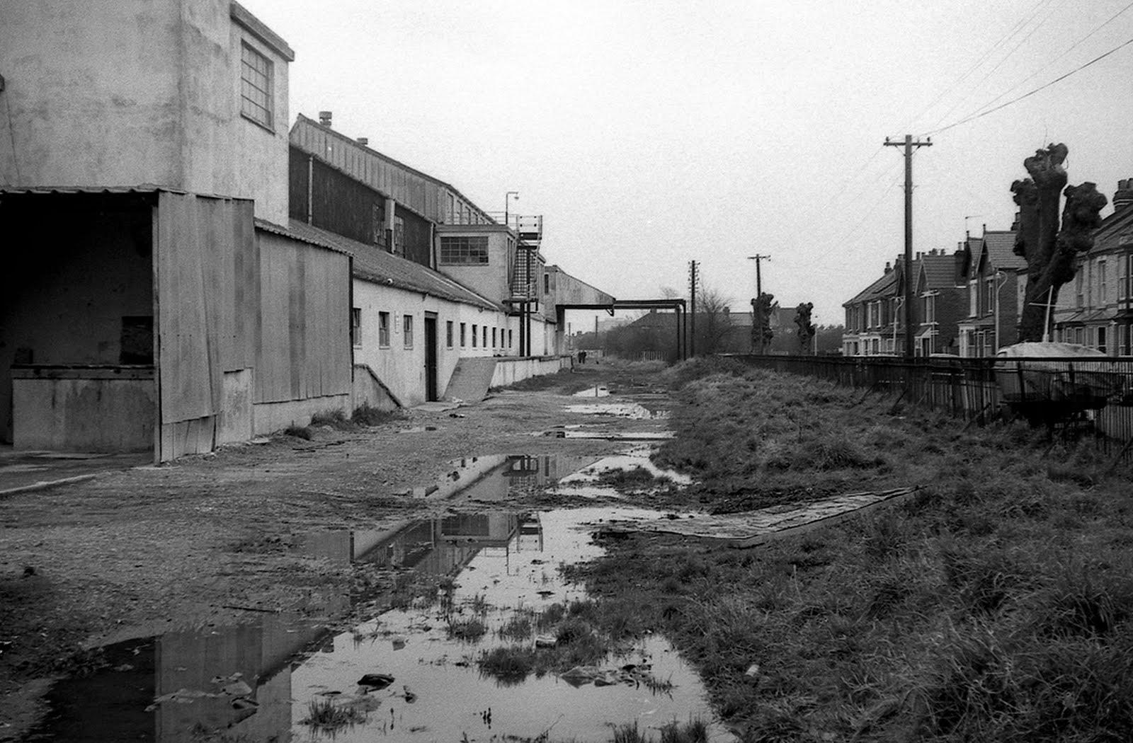 Wallpaper Factory siding