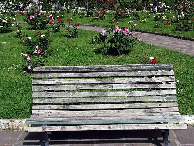 Bench, Roseto di Roma, Rome Rose Garden, Aventine Hill, Rome