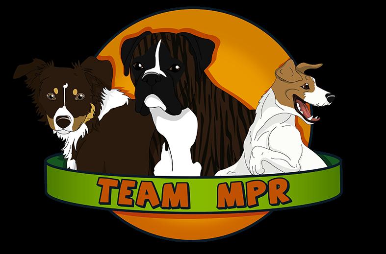 Team MPR