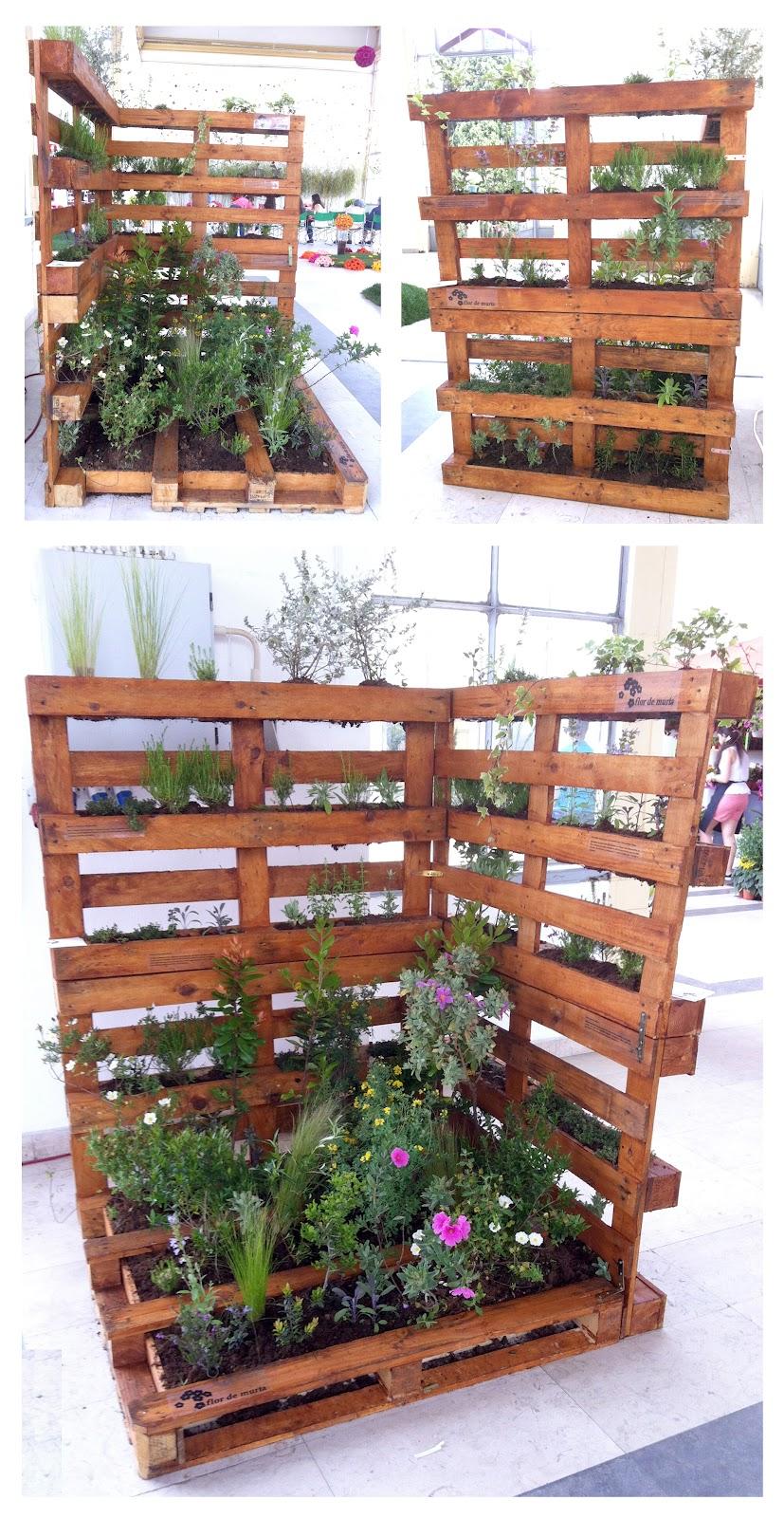 decoracao jardim paletes : decoracao jardim paletes:Lydia-a-dia: Decoração: Paletes no Jardim *-*