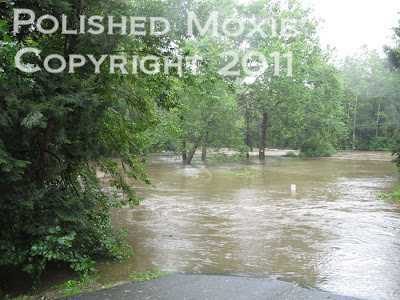 Picture of river flooded park and street