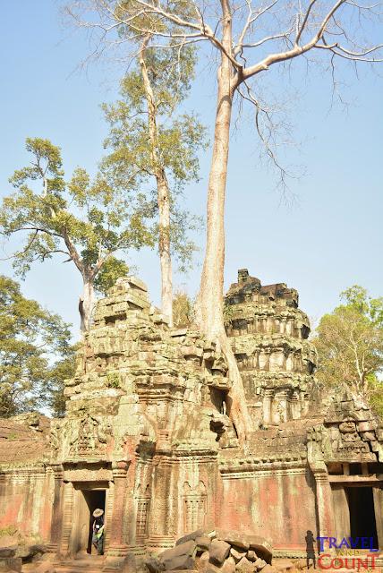 Ta Phrom, Angkor Cambodia