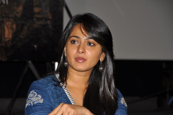Anushka Pics From Nanna Movie Press Meet In Hyderabad - Famous Celeb Press Meeting Gallery - Famous Celebrity Picture