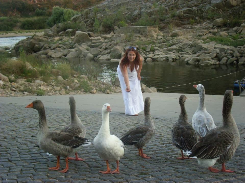 Adoro gansos..