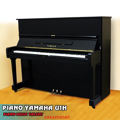 ban dan YAMAHA U1H MUSICTALENT