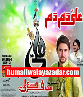 Ali Nohay 2013 Related Keywords & Suggestions - Farhan Ali Nohay 2013 ...