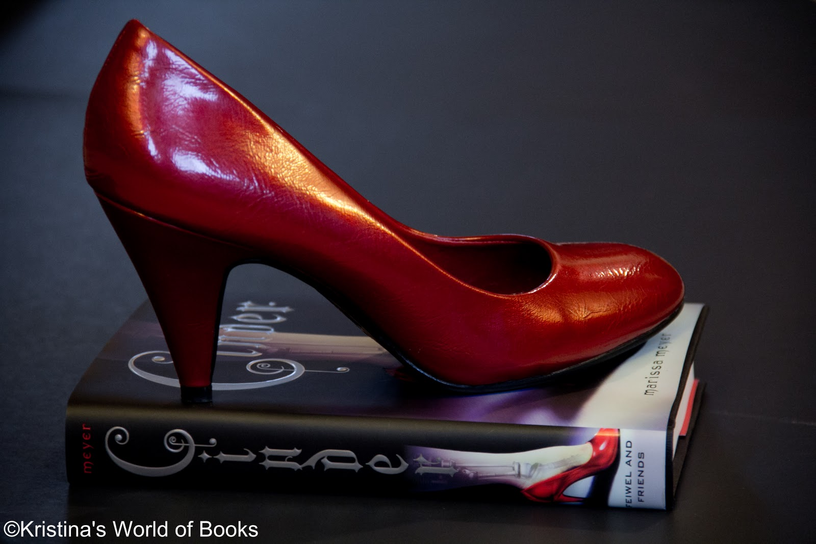 in her shoes book pdf