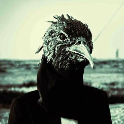 A birdman from the back cover of musician Steven Wilson's album Insurgentes