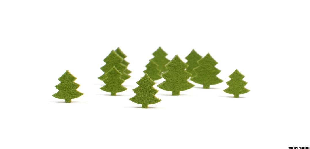 weihnachtsbaum weltweit daydreamer kev. Black Bedroom Furniture Sets. Home Design Ideas