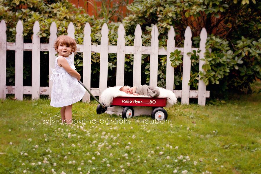 Marysville newborn photographer
