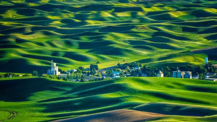 Chiem nguong thung lung Palouse voi ve may bay di My gia re