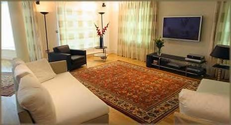 living room area rugs designs ideas