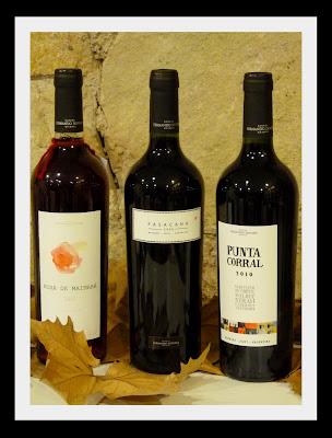 http://1.bp.blogspot.com/-lLh-RchgxoU/TlBbwT6I5vI/AAAAAAAAKeM/B6QecgDmru0/s400/Los+vinos+de+Fernando+Dupont.jpg