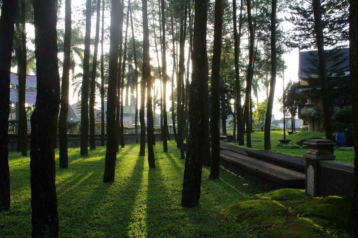 Tempat Foto Prewedding Blimbing Malang
