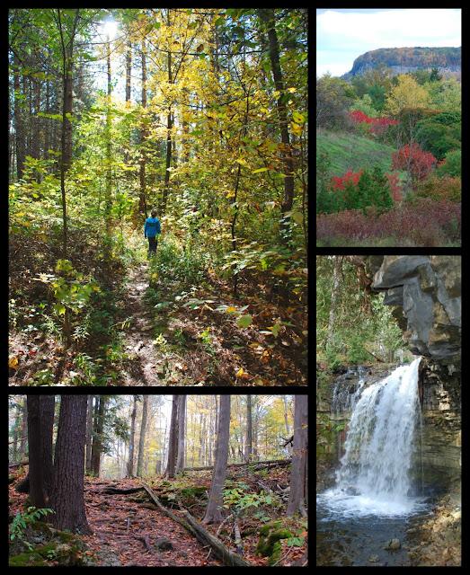 Hilton Falls, Halton Conservation Area, Hiking, Fall
