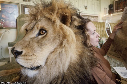 woman living with lion