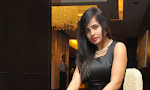 Hashika Dutt photos at Player trailer launch-thumbnail