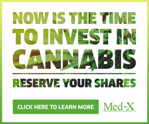 Cannabis Investments